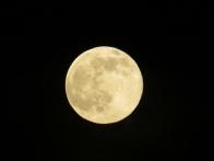 Grossmutter Mond