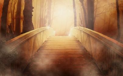 Seelenwege begleiten: Schamanische Praxis