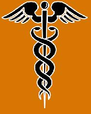 Caduceus - ein ursprünglich schamanisches Symbol: 2 Schlangen und ein Adler