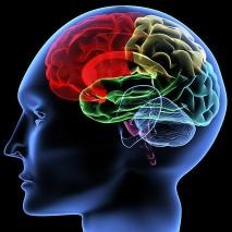 Das menschliche Bewusstsein, Unterbewusstsein...