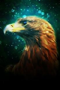 Krafttier Adler